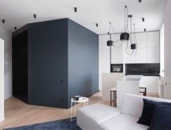 巧妙的空间分割:莫斯科不规则小户型装修设计