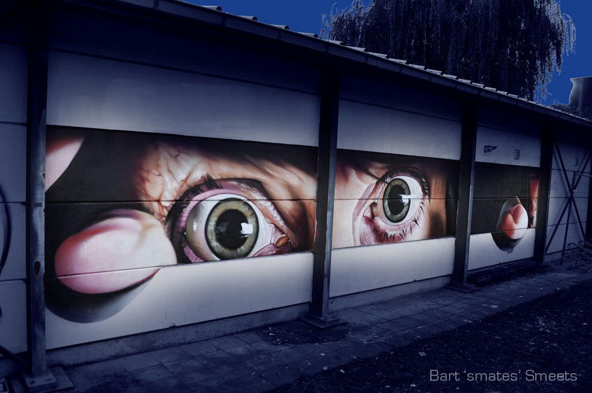 Bart Smeets街头艺术作品