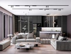 精美优雅的2个现代家居装修设计
