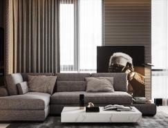 2個精致豪華的現代公寓裝修