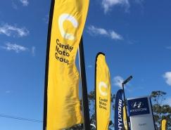 Cardiff Motor Group品牌视觉畅博官网手机app
