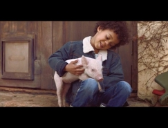 宠物猪: 亚马逊※智能音响Alexa广告欣赏