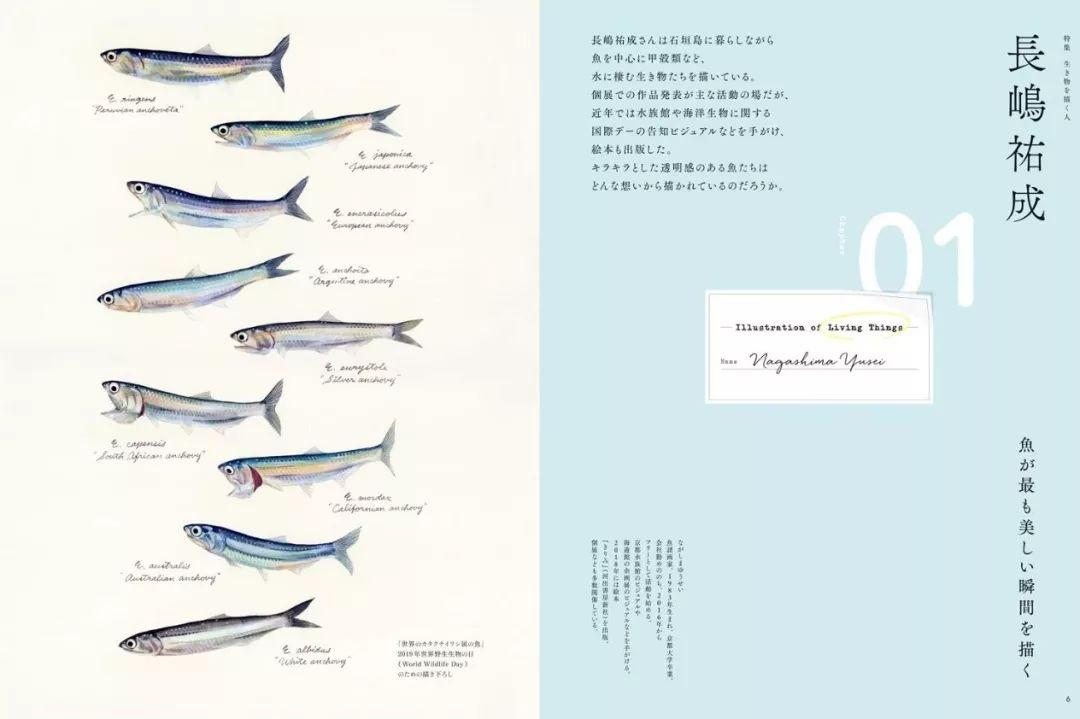 日本杂志版式编排设计欣赏
