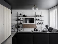 罗马尼亚灰色极简风公寓设计