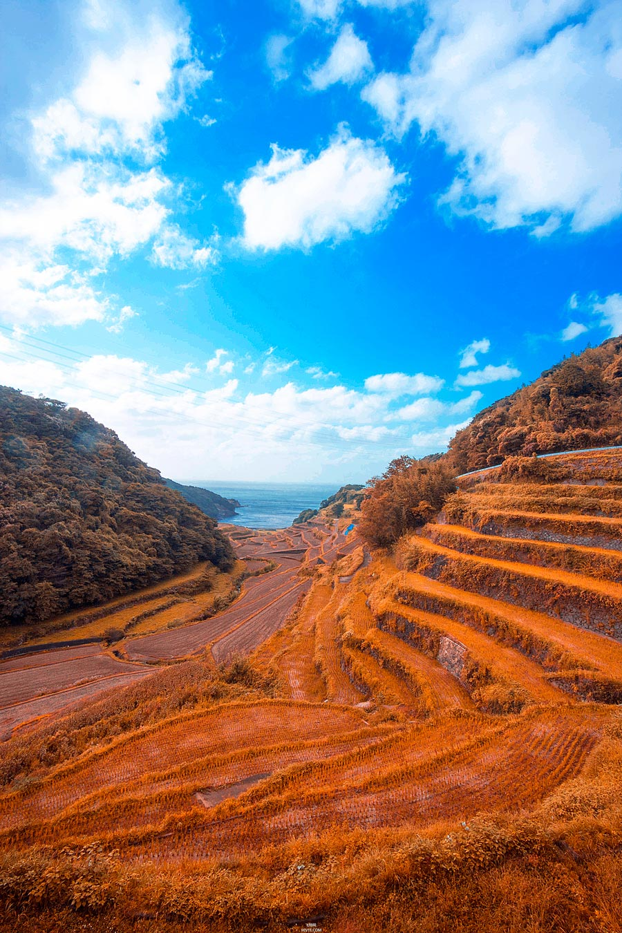 PS把春季山坡照片调成唯美秋季色彩的方法