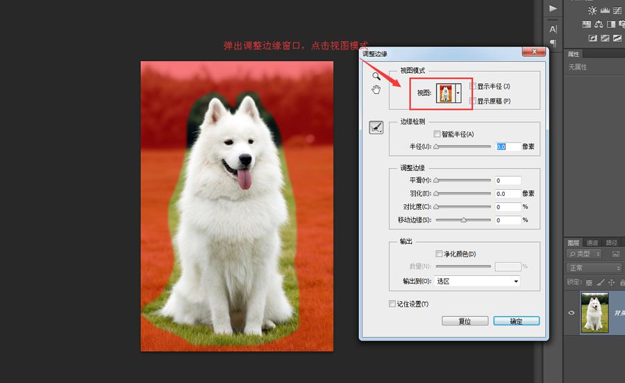 Photoshop抠出草地上可爱小狗