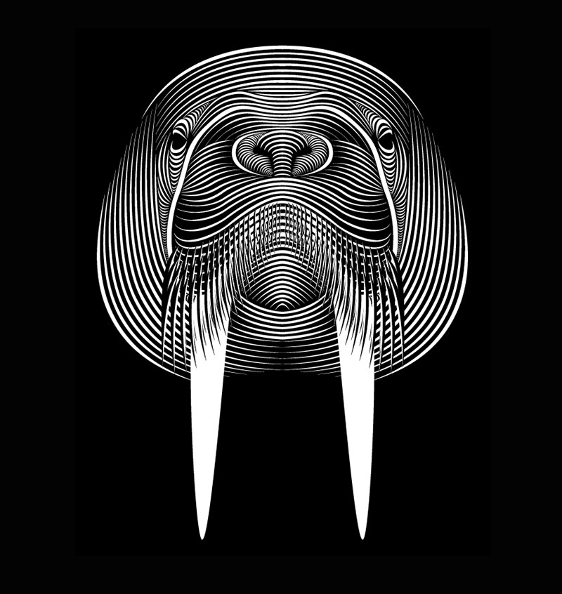 Patrick Seymour线描风格插画作品