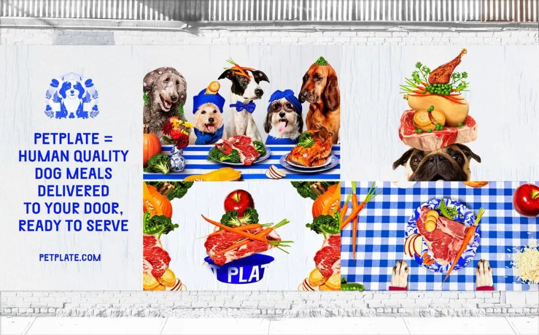 宠物食品Pet Plate品牌设计案例