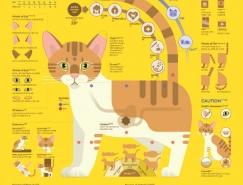 韩国Sung Hwan Jang精美的信息图表设计