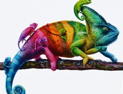 Jacub Gagnon色彩艳丽的动物插画