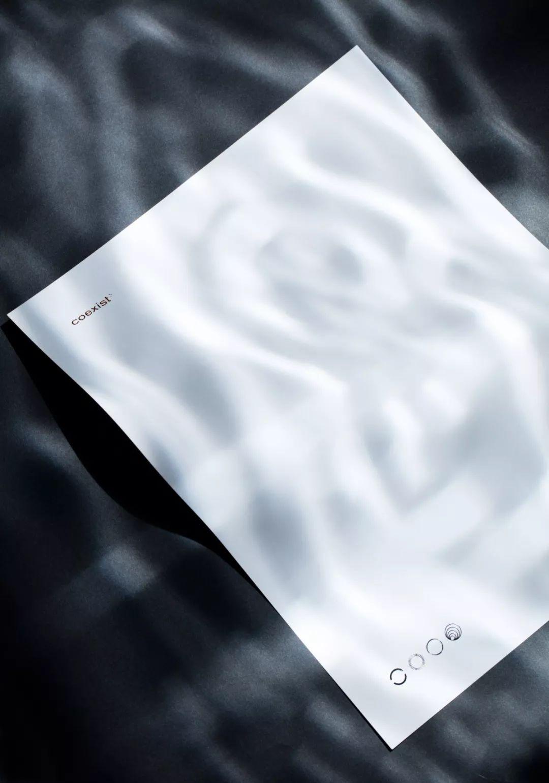 唱片公司Coexist品牌VI形象设计