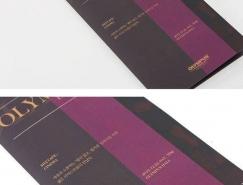 14种不同主题风格的折页设计欣赏