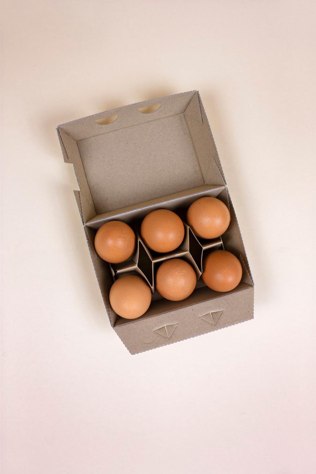 清新绿色风的Gut Kragenhof鸡蛋包装
