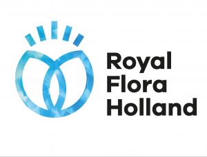 荷兰鲜花交易网站FloraHolland品牌形象设计