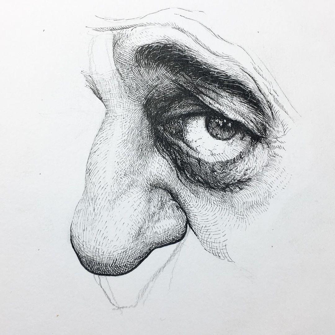 Alphonso Dunn人体系列钢笔画作品