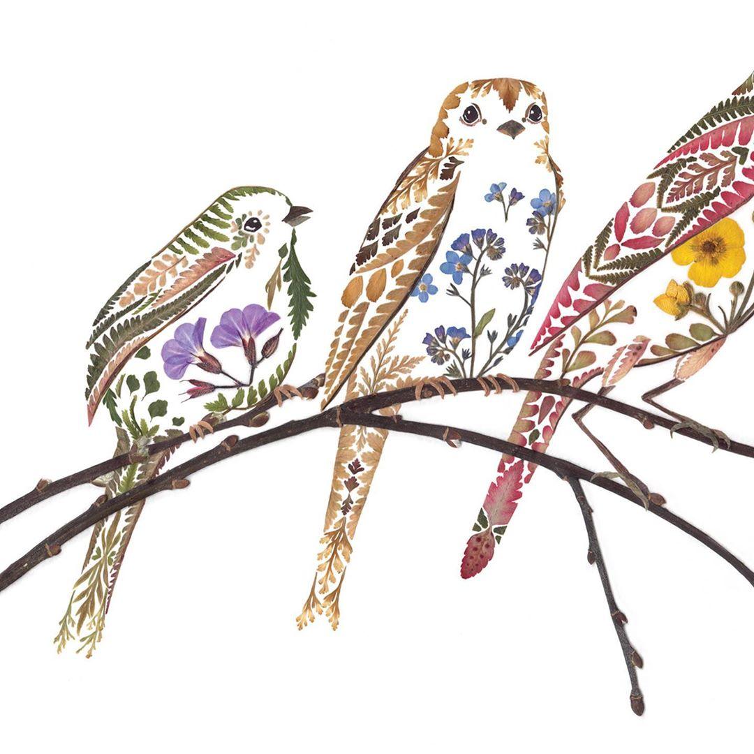 Helen Ahpornsiri令人惊叹的植物拼贴插画