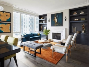 颜色,纹理和主题统一,芝加哥豪华高层住宅