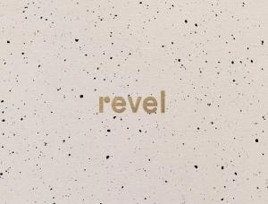精致而低调的美学效果:多元化活动公司Revel品牌形象设计