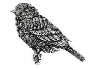 Alex Konahin精细的铅笔画作品