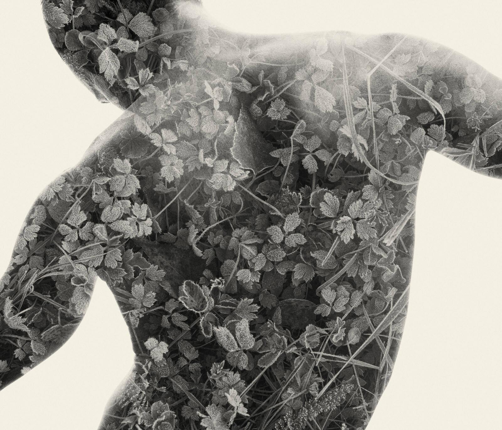 我们是自然:Christoffer Relander双重曝光摄影作品