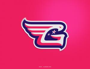 天空王者!20款老鹰元素Logo设计