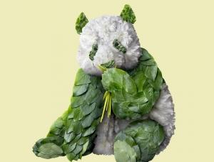 尽显自然之美!井上羅來Raku Inoue的植物拼贴动物