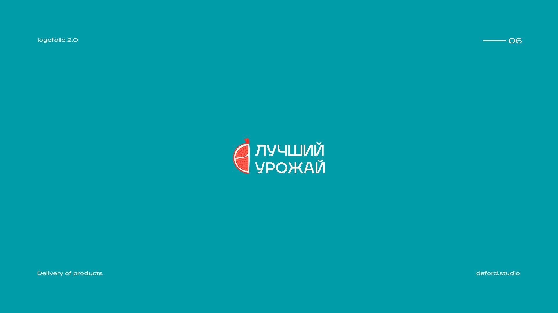 俄罗斯deford studio标志设计作品