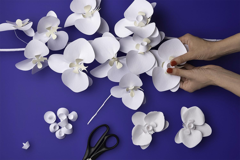 展现纸张的创造力,Neenah Paper纸业高端画册设计