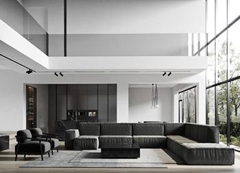 黑白元素打造豪华现代家居空间
