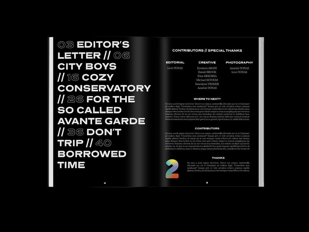 Cozy杂志版式设计