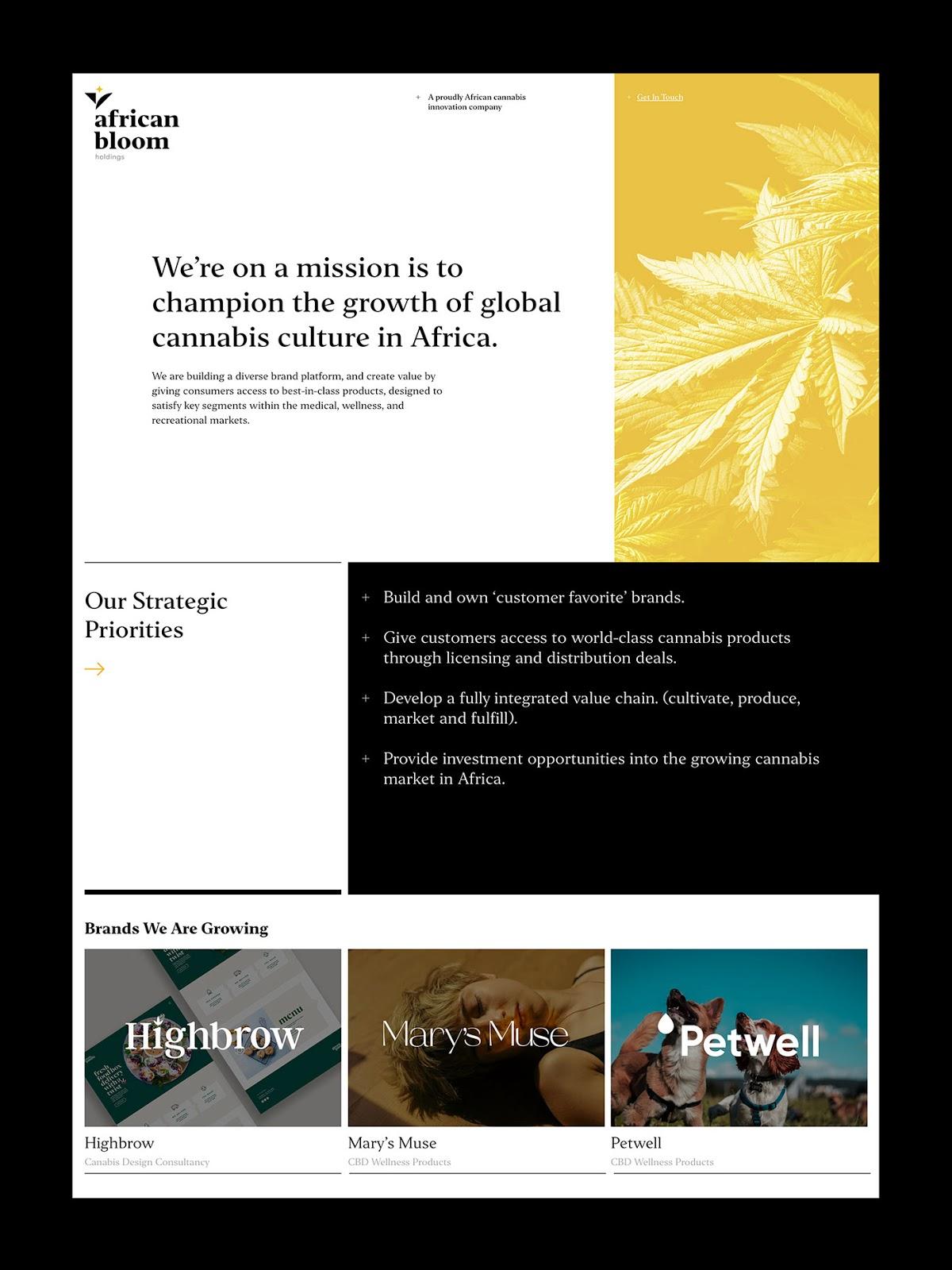 Africa Bloom Holdings品牌视觉VI设计