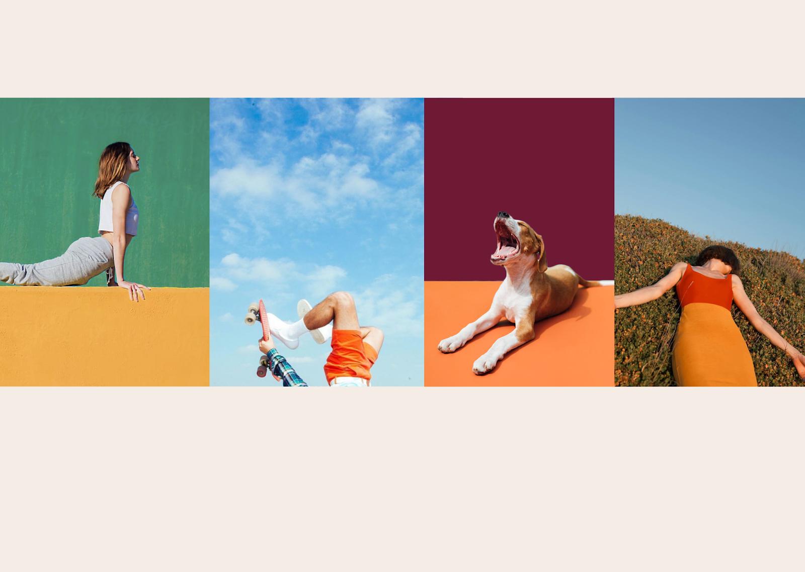 YOGO瑜伽墊品牌視覺設計
