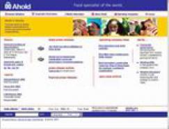 全球500强网站截图欣赏(4)