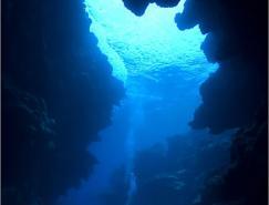 水中使用广角摄影