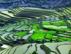 大自然的景观--云南元阳梯田