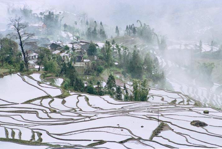 大自然的景观--云南元阳梯田 撒马坝梯田