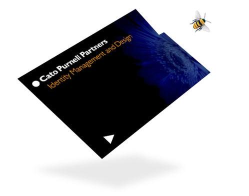 凯图(CatoPurnellPartners)澳门金沙网址公司澳门金沙网址