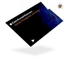 凯图(CatoPurnellPartners)正规棋牌游戏平台公司作品