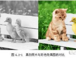 黑白照片上色教程