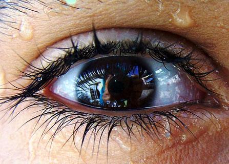 眼睛特写摄影作品欣赏(2)