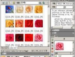 Dreamweaver中如何使用库项目
