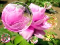 Photoshop制作梦幻花朵泡泡