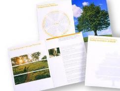 graham包装及画册版面设计