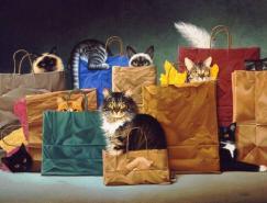荷兰艺术家BraldtBralds的猫插画作品