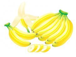 水果系列:香蕉矢量素材