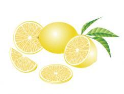 水果系列:柚子矢量素材