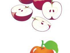 水果系列:苹果矢量素材