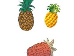 水果系列:菠萝矢量素材