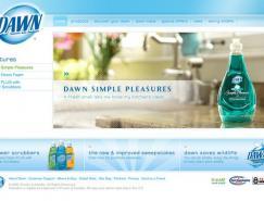 DAWN日化用品清爽的网页设计