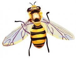 蜜蜂矢量素材